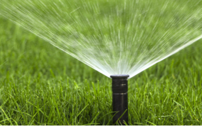Reduce the amount you water your lawn