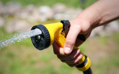 Hand watering hose tips