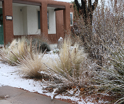 Winterize your irrigation system