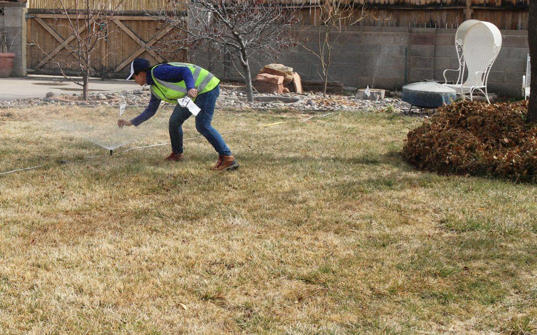 Spring Irrigation Startup