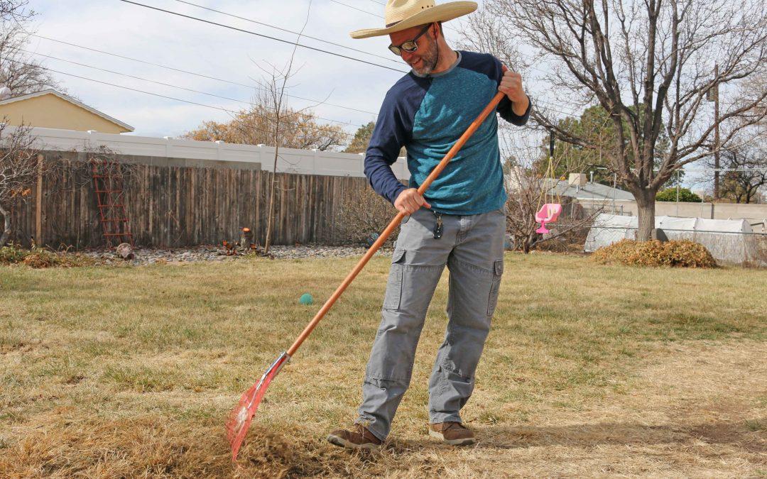 Spring Landscape Cleanup