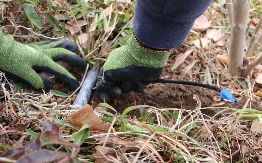 Simple Irrigation Maintenance Techniques
