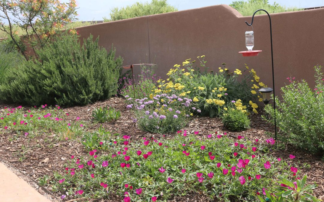 4 Common Myths about Organic Mulch