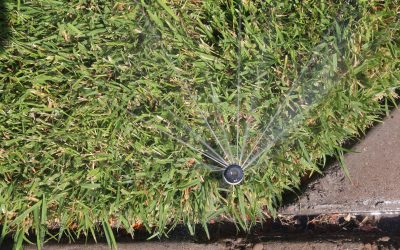 Avoid water waste! Follow Time-of-Day Watering Restrictions from April 1 to Oct 31