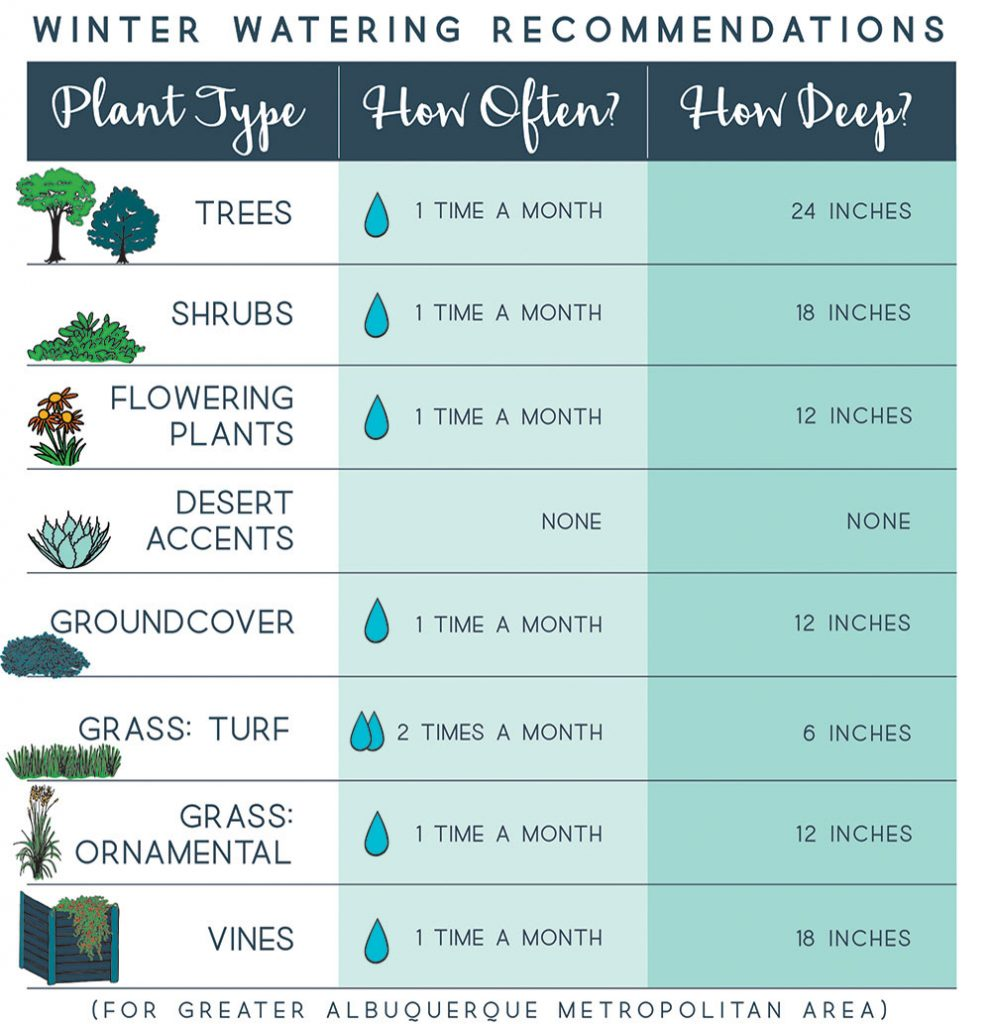 WINTER WATERING RECOMMENDATIONS