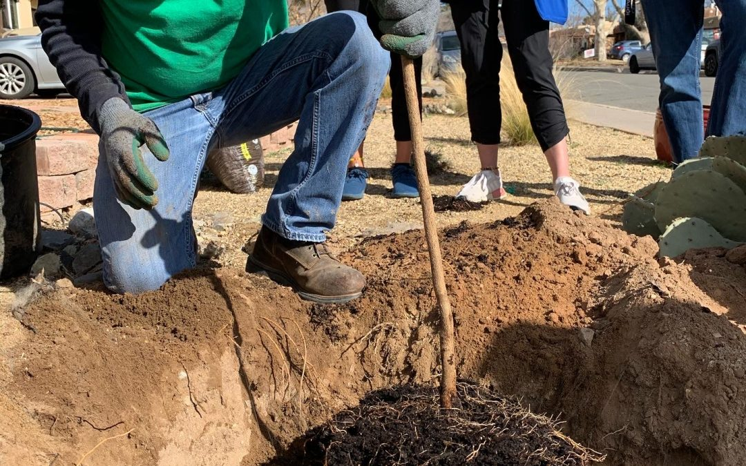 Soil Searching: To Amend or Not to Amend?