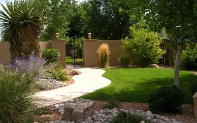 New Water Authority Rebates: Easy Ways to Boost Your Landscape Irrigation Efficiency