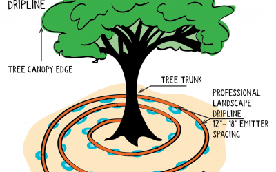 How to make a Tree Watering System for your established and mature trees