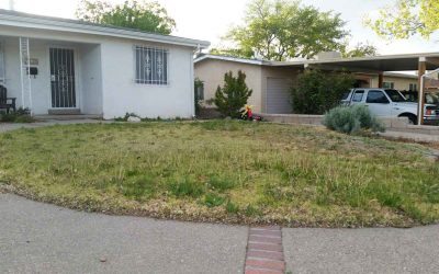 "WA Customers list the ""Top Reasons to Convert a Lawn to a Desert Friendly Xeriscape"""