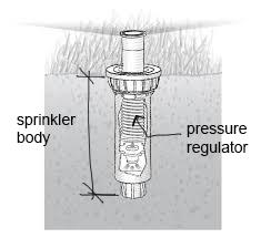 Spray sprinkler body