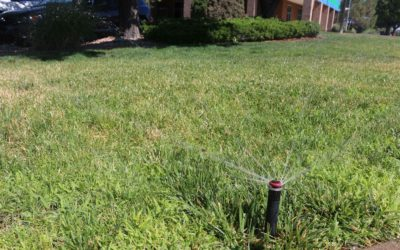 Make your turfgrass irrigation more efficient in 3 easy steps.